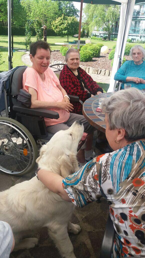 Hundetherapie im Garten